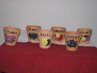 Attached Image: flower pots 002.jpg