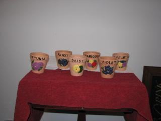 Attached Image: flower pots 001.jpg