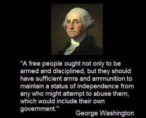 Attached Image: George Washington quote on guns.jpg