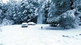 snowfalldec82017.jpg