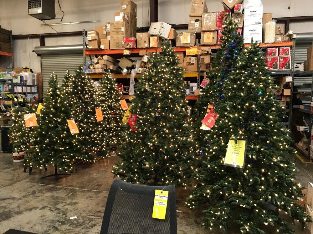 FB Christmas Tree Assortment 2.jpg