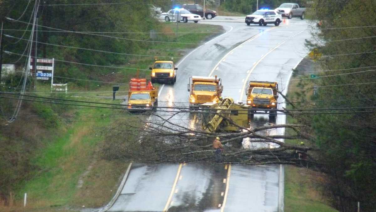 Tree blocks Mechants Drive in Dallas