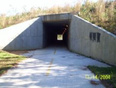 Tunnel going under 278 on silver comet trail
