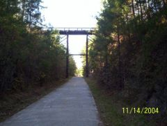 All of the wooden bridge on trail.